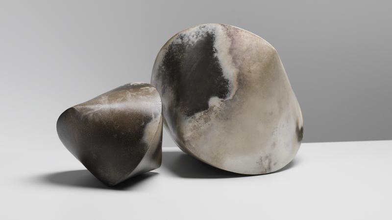 Janus Forms